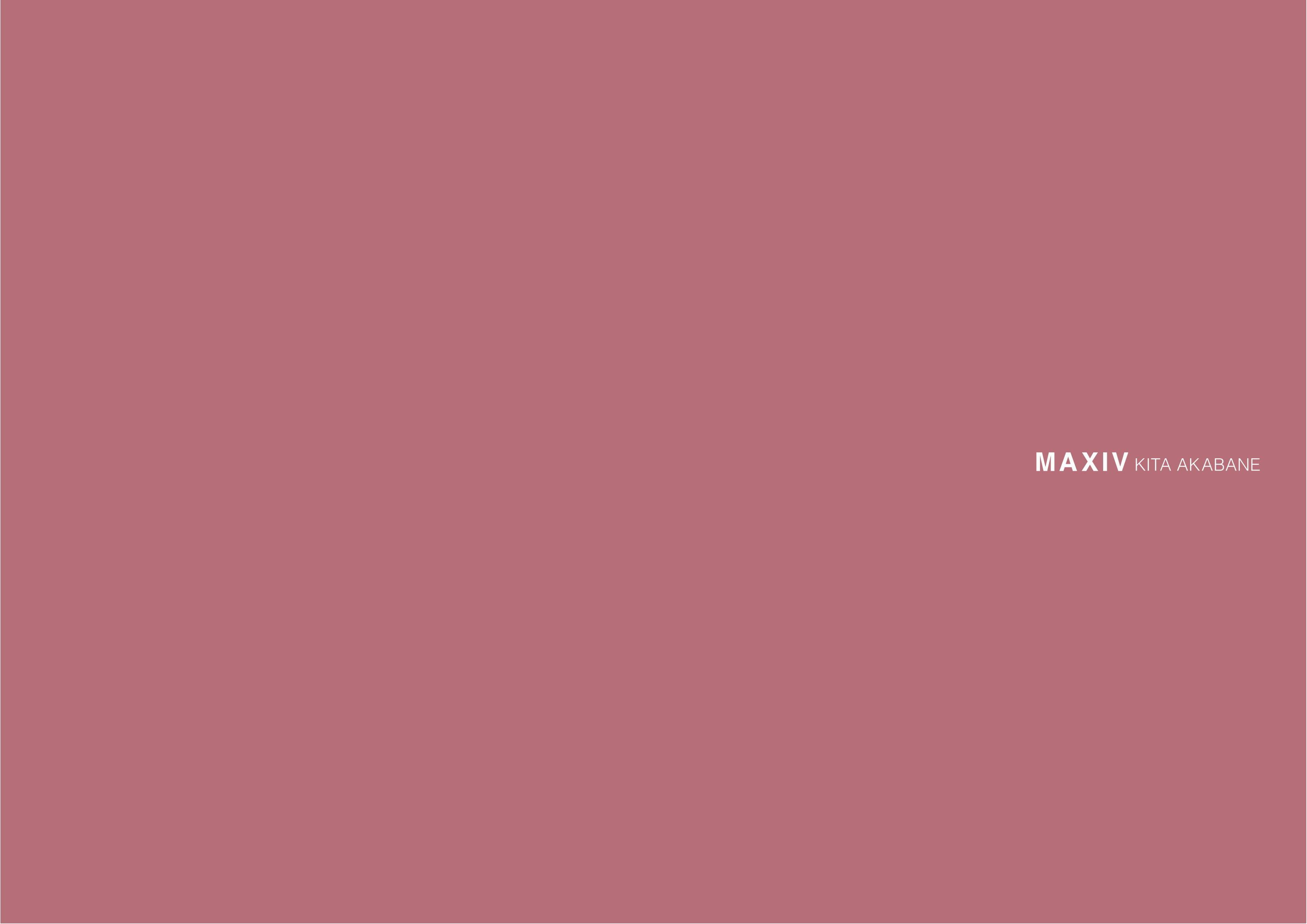 MAXIV 北赤羽 完成パンフ-01